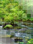 癒しの山の小川写真待ち受け画像